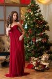 Muchacha con un vidrio de champán en el árbol del Año Nuevo Imágenes de archivo libres de regalías