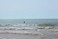 Muchacha con una bola roja en el mar entre las ondas Imágenes de archivo libres de regalías