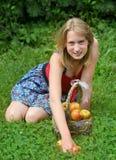 Muchacha con una cesta de manzanas Foto de archivo libre de regalías