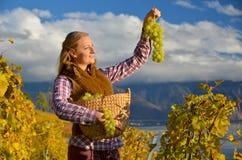 Muchacha con una cesta llena de uvas Imágenes de archivo libres de regalías