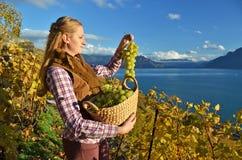 Muchacha con una cesta llena de uvas Imagen de archivo