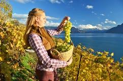 Muchacha con una cesta llena de uvas Fotos de archivo libres de regalías