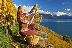 Muchacha con una cesta llena de uvas Imagenes de archivo