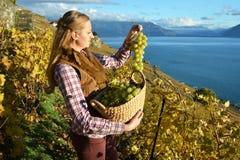 Muchacha con una cesta llena de uvas Imagen de archivo libre de regalías