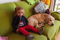 Muchacha de dos años y labrador retriever que se sientan en un sofá en casa Imágenes de archivo libres de regalías