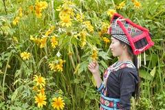 Muchacha de Hmong con el vestido y el loto del calture Imágenes de archivo libres de regalías