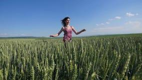 Muchacha de la belleza que corre en campo de trigo verde Concepto de la libertad Mujer feliz al aire libre imagenes de archivo