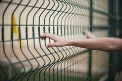 Muchacha de la mano Foto de archivo libre de regalías