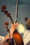 Muchacha de la mano con arco de violín del violoncelo Fotos de archivo