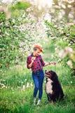 Muchacha de la mujer con el perro Berna en jardín de la primavera, Fotos de archivo libres de regalías