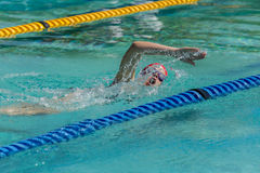 Muchacha de la natación Imagenes de archivo
