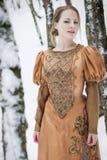 Muchacha de la nieve Foto de archivo libre de regalías