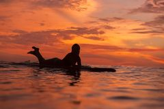 Muchacha de la persona que practica surf en el océano en el tiempo de la puesta del sol Imagen de archivo libre de regalías
