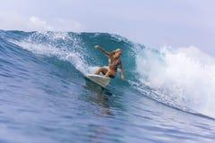 Muchacha de la persona que practica surf en una onda Imagenes de archivo