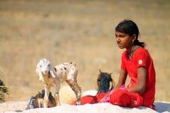 Muchacha de Rajasthán con los animales Foto de archivo libre de regalías