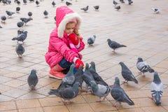 Muchacha de siete años en palomas de alimentación del wiinter en la calle Imagen de archivo
