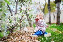Muchacha de un año cerca de manzanos en la plena floración fotos de archivo