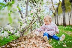 Muchacha de un a?o cerca de manzanos en la plena floraci?n imagenes de archivo