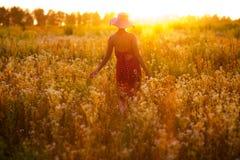 Muchacha de wildflowers en una tarde del verano Fotografía de archivo libre de regalías