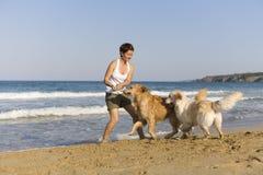 Muchacha de Yong que juega con sus perros Fotografía de archivo