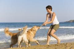 Muchacha de Yong que juega con sus perros Fotografía de archivo libre de regalías