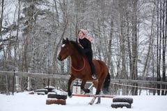 Muchacha del adolescente con la demostración marrón del caballo que salta sin el freno y s Imagen de archivo