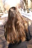 Muchacha del adolescente con la opinión marrón larga de la parte posterior del pelo Fotos de archivo