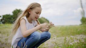 Muchacha del adolescente que despluma la margarita en césped del verano Flores de la manzanilla del prado de la cosecha de la chi almacen de metraje de vídeo