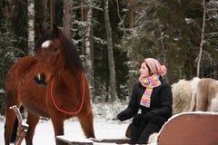 Muchacha del adolescente que se sienta en el trineo con las pieles y el caballo marrón Imagenes de archivo