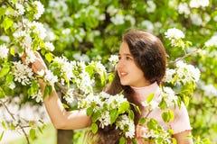 Muchacha del adolescente que sostiene las flores blancas en el peral Fotos de archivo