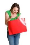 Muchacha del bolso de compras Foto de archivo libre de regalías