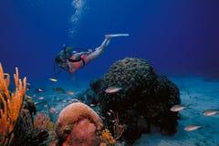 Muchacha del Caribe del equipo de submarinismo de Islas Vírgenes Foto de archivo libre de regalías