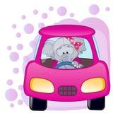 Muchacha del elefante en un coche Foto de archivo libre de regalías
