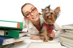 Muchacha del estudiante con el terrier de Yorkshire Foto de archivo libre de regalías