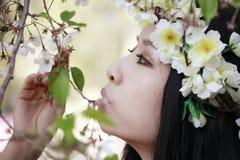 Muchacha del flor de cereza Fotos de archivo libres de regalías