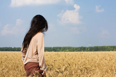 Muchacha del Hippie en la opinión trasera del campo de trigo Imagen de archivo libre de regalías