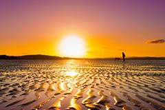 Muchacha del inconformista que juega con el perro en una playa durante puesta del sol foto de archivo