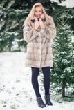 Muchacha del invierno en abrigo de pieles de lujo Imagen de archivo