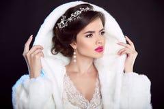 Muchacha del invierno en abrigo de pieles de lujo de la moda hairstyle maquillaje beaut Fotos de archivo
