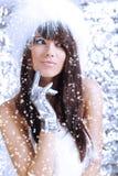 Muchacha del invierno en el fondo de plata Fotos de archivo