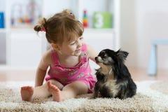Muchacha del niño con el perrito melenudo de la chihuahua del negro del pequeño perro Imagen de archivo libre de regalías