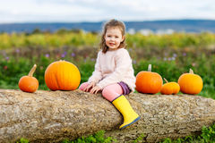 Muchacha del niño con la porción de calabazas en campo Fotografía de archivo