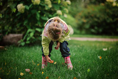 Muchacha del niño en las botas de goma que juegan en césped en jardín del verano Imágenes de archivo libres de regalías