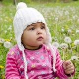 Muchacha del niño en prado con los dientes de león Fotos de archivo