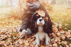 Muchacha del niño que juega con su perro en jardín del otoño en el paseo fotografía de archivo