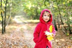 Muchacha del otoño en un capo motor rojo imagenes de archivo