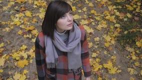 Muchacha del otoño que camina en parque de la ciudad Retrato de la mujer joven preciosa y hermosa feliz en bosque en colores de l almacen de metraje de vídeo