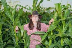 Muchacha del país en campo de maíz Fotografía de archivo libre de regalías