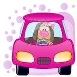 Muchacha del perro en un coche Imagenes de archivo