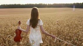 Muchacha del violinista que camina a través de un campo de trigo almacen de video